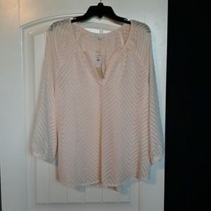 NWT Daniel Rainn Top